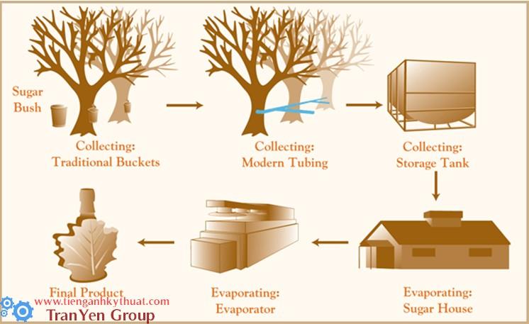 Quy trình sản xuất si rô