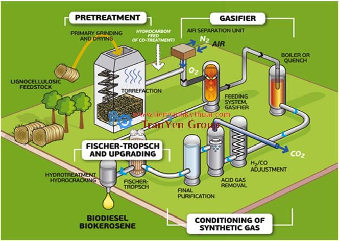 Quy trình sản xuất dầu sinh học