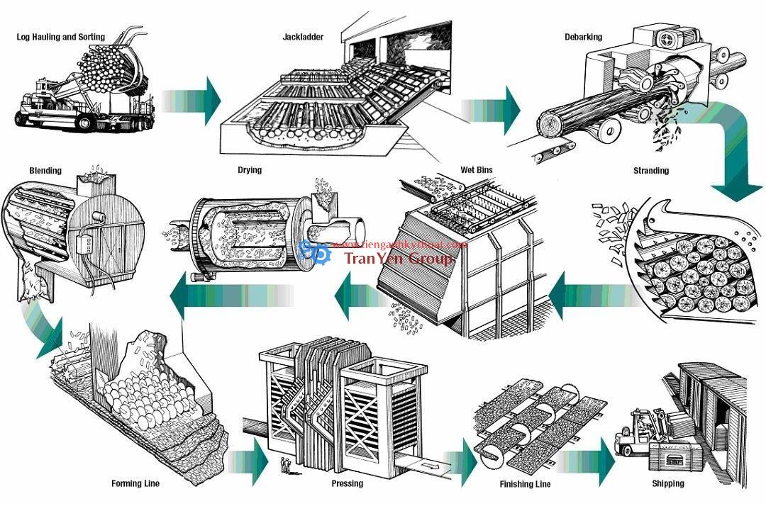 Quy trình sản xuất sản phẩm từ gỗ