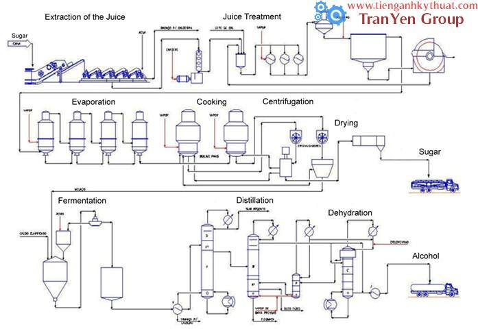 Quy trình chế biến và sản xuất chế phẩm từ trái cây