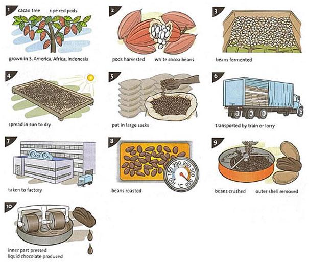 Quy trình sản xuất sô-cô-la
