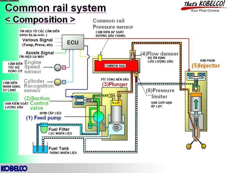 sơ đồ của hệ thống common rail